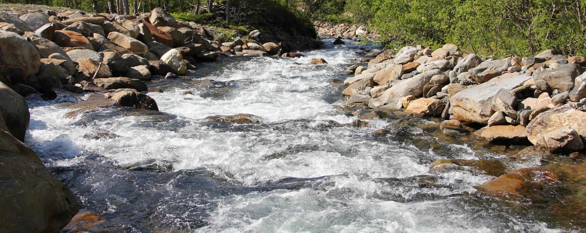 elv med mye vann